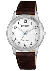 Citizen FE6011-14A Eco-Drive